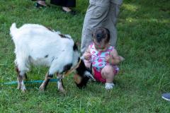 SM-Petting-Zoo1