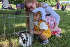 SM-Petting-zoo2